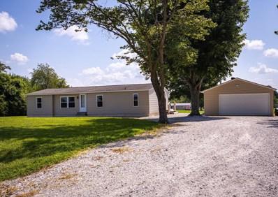 10262 Stringtown Road, Baldwin, IL 62217 - #: 19051234