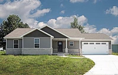 820 Amber Road, Okawville, IL 62271 - #: 19055649