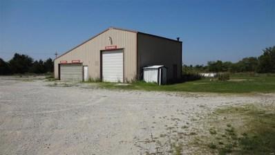 2219 Hwy 161, Danville, MO 63361 - #: 19057489