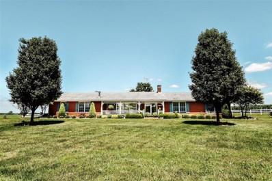 14081 State Route 15, Nashville, IL 62263 - #: 19058435