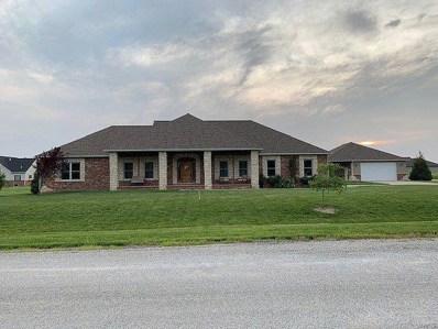 14337 North Fork, Aviston, IL 62216 - #: 19058817