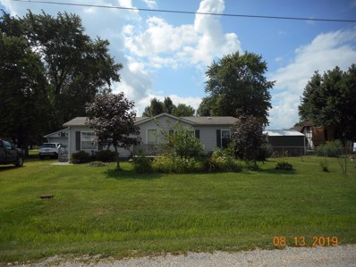 102 Lone Starr Street, Nokomis, IL 62075 - #: 19061136