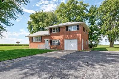 9603 Dressel Shoene Road, Trenton, IL 62293 - #: 19069586