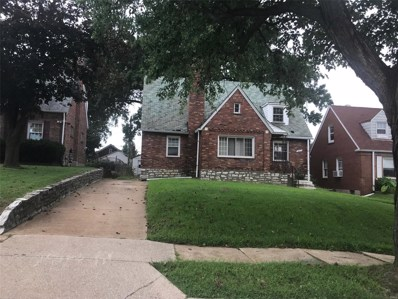 3671 Manola Avenue, St Louis, MO 63121 - #: 19070238