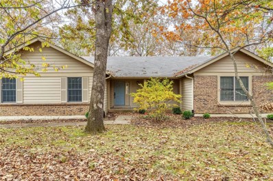 917 Silver Fox Woods Drive, Innsbrook, MO 63390 - #: 19082438