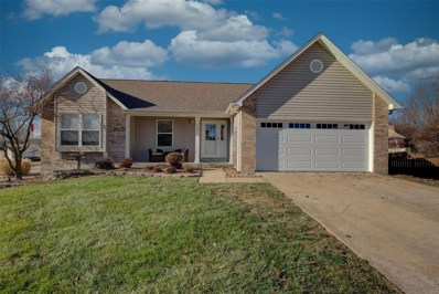 13 Doubletree Court, St Charles, MO 63303 - #: 19088102
