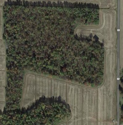 West of Hwy BB, Neelyville, MO 63954 - #: 19088114