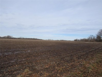 Highway 54, Curryville, MO 63339 - #: 20002003