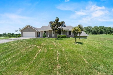 14 Sunny Hill Lane, Perryville, MO 63775 - #: 20006015
