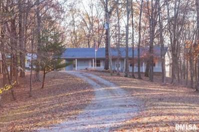 364 Pauper Farm Road, Elizabethtown, IL 62931 - #: 20006707