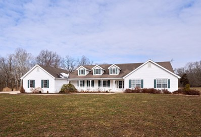 1 Humes Road, Foristell, MO 63348 - #: 20009713