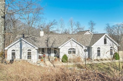 19382 Babler Forest Road, Wildwood, MO 63005 - #: 20010637