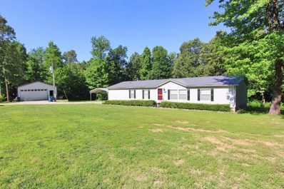 19500 County Road 262, Bloomfield, MO 63825 - #: 20038475