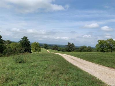Hwy 133, 157 acres, Meta, MO 65058 - #: 20057438
