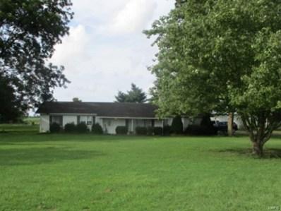 22641 62 Hwy, Clarkton, MO 63837 - #: 20065290