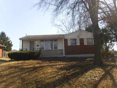 5510 Mclaran Avenue, St Louis, MO 63136 - #: 20069951