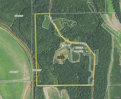 610 E County, Eldred, IL 62027 - #: 20075528