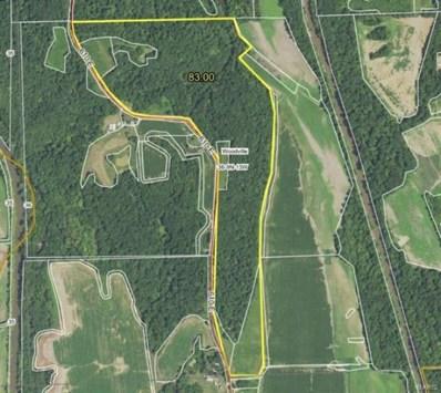 610 E County Road, Eldred, IL 62027 - #: 20075540