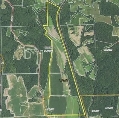 610 E County Road, Eldred, IL 62027 - #: 20075562