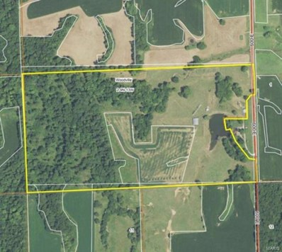 SW 500 AVE, Eldred, IL 62027 - #: 20081775