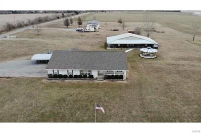 378 County Highway 405, Sikeston, MO 63801 - #: 20084871