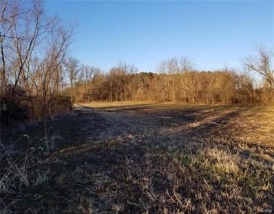 30196 County Road 207, Advance, MO 63730 - #: 20091043
