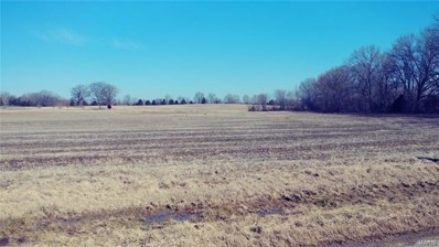 Highway M, Bloomfield, MO 63825 - #: 21006987