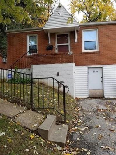 7041 Theodore Avenue, St Louis, MO 63136 - #: 21007306