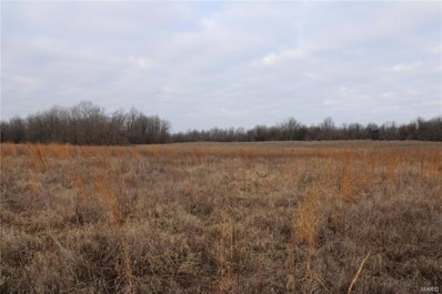 County Road 272, Neelyville, MO 63954 - #: 21007558