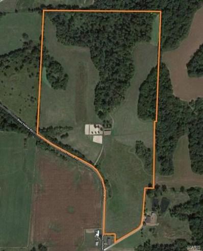 Bess Hollow, Kampsville, IL 62053 - #: 21014400