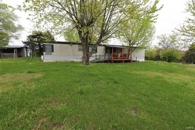 1303 MITCHELL RD, Park Hills, MO 63601 - #: 21025433