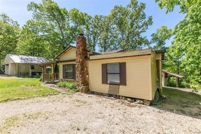 215 Lakeview Drive, Wappapello, MO 63966 - #: 21031878