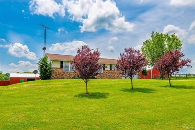 8627 Highway O, Perryville, MO 63775 - #: 21034155