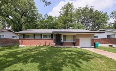 9909 Castle Drive, St Louis, MO 63136 - #: 21048630