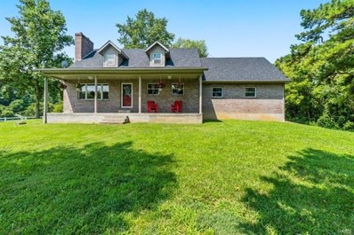 9912 Highway D, Frohna, MO 63748 - #: 21054002