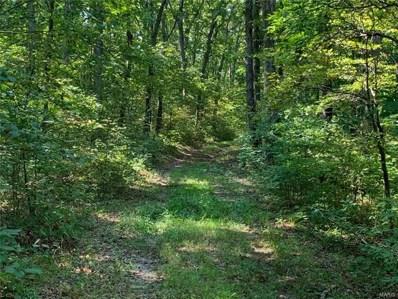 Pinnacle Lake Estates Trails, New Florence, MO 63363 - #: 21061459