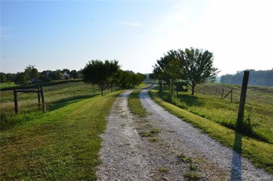 414 West St., Frohna, MO 63748 - #: 21063534