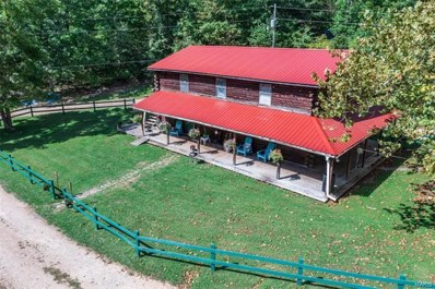628 County Road 200, Lesterville, MO 63654 - #: 21066811