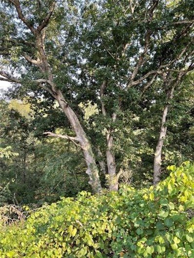 Fig Trail, Unionville, MO 63565 - #: 21068041