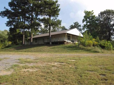 19318 State Hwy. E, Bloomfield, MO 63825 - #: 9940971