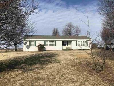 15413 State Hwy J, Bloomfield, MO 63825 - #: 9941468