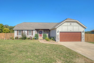 1425 Matthew Circle, Webb City, MO 64870 - #: 184943