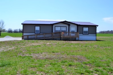 25060 Mulberry Road, Webb City, MO 64870 - #: 191547
