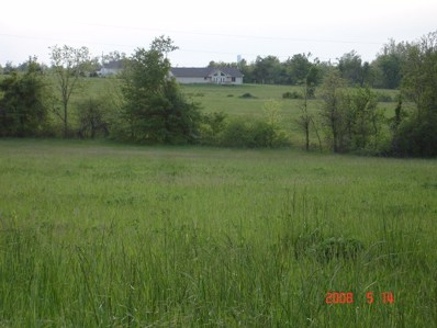 5334 S 214th Road, Pleasant Hope, MO 65725 - #: 60053555