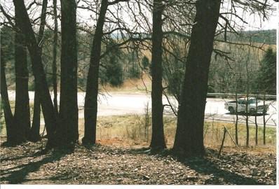 71b Highway, Pineville, MO 64856 - #: 60078443
