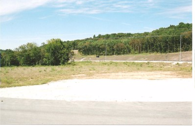 90 Highway UNIT Lot 3, Pineville, MO 64856 - #: 60078456