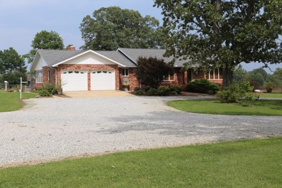 18530 County Road 431, Summersville, MO 65571 - #: 60087774