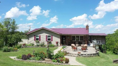 10104 County Road 7230, West Plains, MO 65775 - #: 60099381