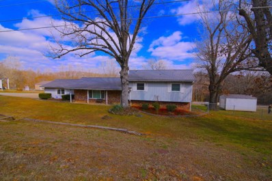 504 Brewer Street, Thayer, MO 65791 - #: 60103450
