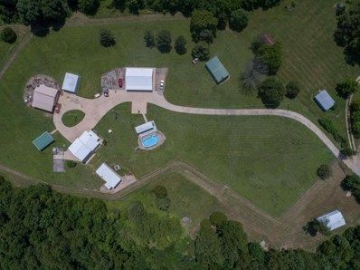 261 County Road 637, Theodosia, MO 65761 - #: 60104121